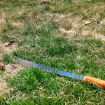 How to Cut Your Lawn With a Machete